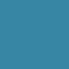 Linkedin Bliss Corp