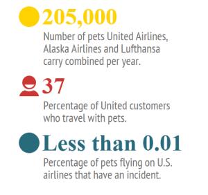statistiche animali domestici in aereo