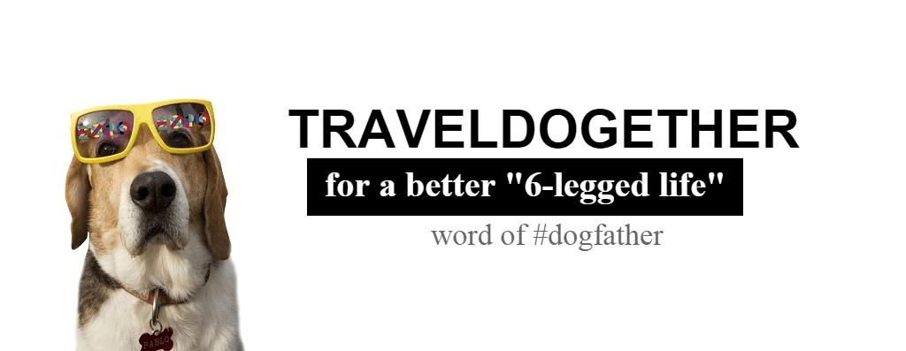 LET'S TRAVEL DOGETHER: La prima guida Pet Friendly di Milano!