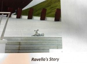 La storia di ravello