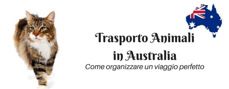 trasporto-animali-italia-australia