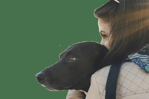 trasporto animali domestici